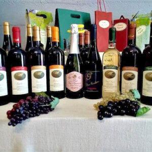 Esposizione dei nostri vini